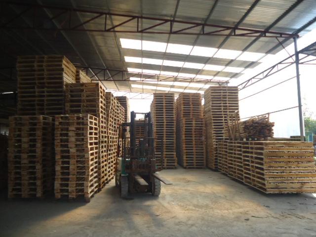 Thiết kế Pallet gỗ theo yêu cầu